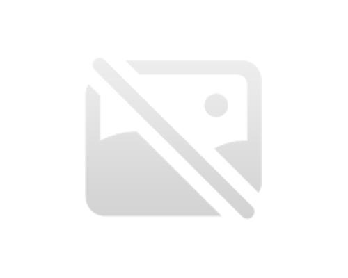Linea di secchezza industriale dell'impiallacciatura del fronte del compensato di 24m con il certificato CE